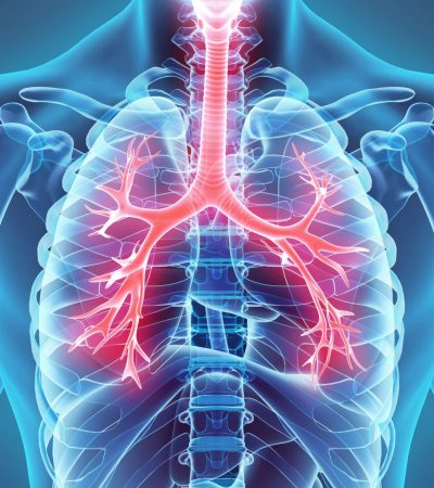 How to protect your lung?
