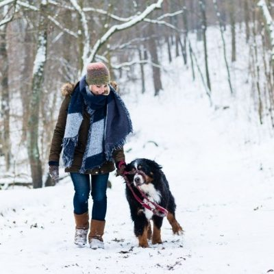 Ways To Stay Active in the Winter